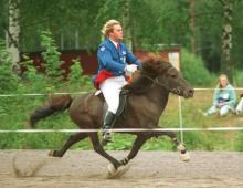 hinni-og-eitill-i-gaedingaskeidi-nm-finnlandi-1994-jpg