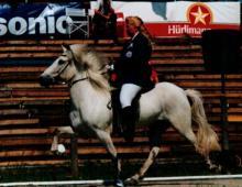 stefnir-i-sviss-hm-1995-jpg