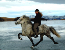 kolfu-fra-stangarholti-og-hulda-a-myvatni-2004-jpg