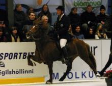 glaesir-fra-ytri-hofdolum-i-egilshollinni-2004-jpg