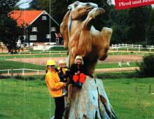 baeklingur-forsida-hrinvollur-hesthus-og-gaedingur-photoshoppad-inn-jpg