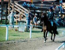 nordurtyska-meistaramotid-1998-katrin-bruning-og-olvaldur-fra-faxaboli-jpg