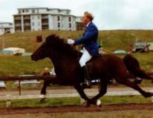 eitill-i-urtoku-fyrir-lm-1990-6-vetra-jpg