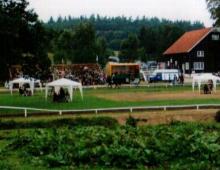 sed-yfir-motssvaedid-vollurinn-stukan-og-hesthusid-jpg